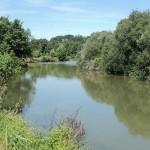 L'eau et les milieux aquatiques