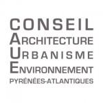 logo-caue64